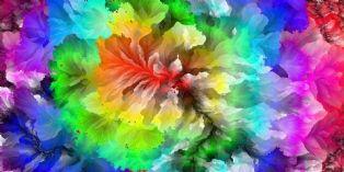 Identité visuelle : Hissez les couleurs !