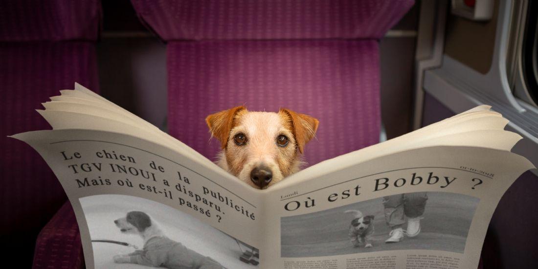La SNCF dévoile le volet social du lancement de TGV InOui