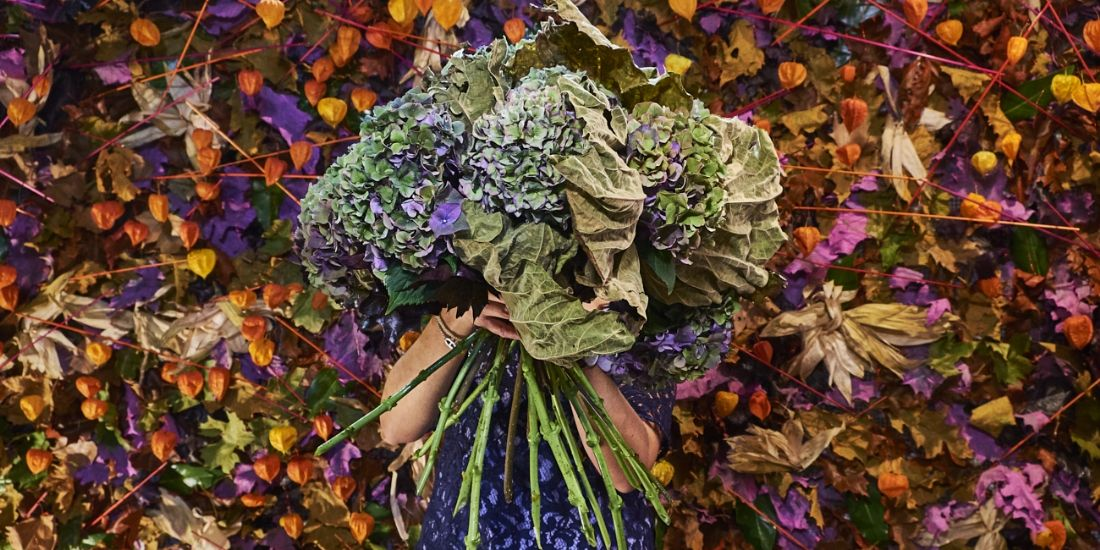 Interflora toujours vert malgré ses 71 printemps