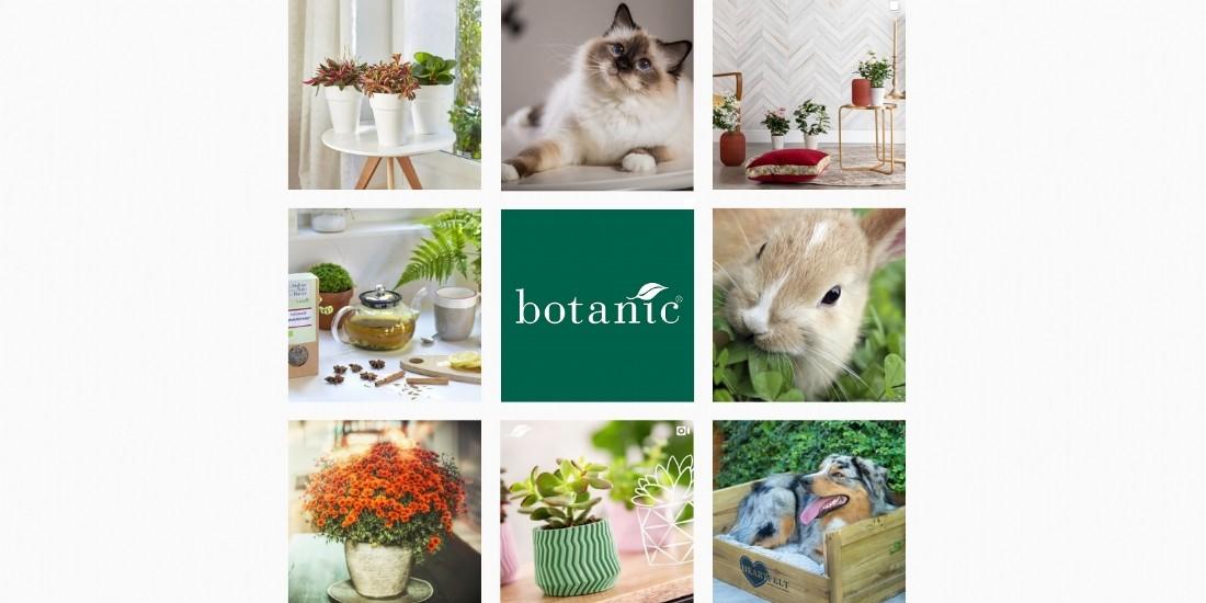 Botanic : un ROI de 3 à 5 en social commerce