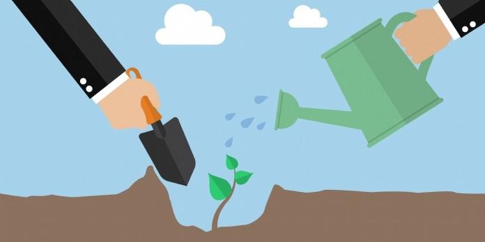 Comment Ecosia séduit ses utilisateurs
