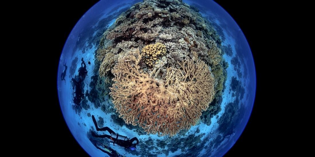 Blancpain affiche son soutien à la cause des océans