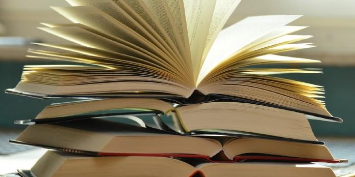 Journée du livre: Rakuten fait le bilan