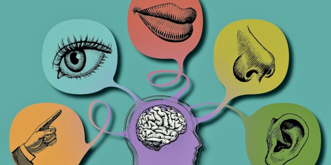 Le marketing sensoriel dansun monde digitalisé